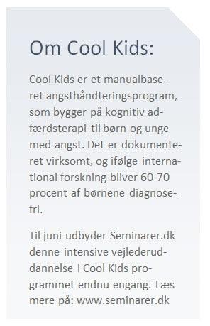 Cool Kids uddannelse angst