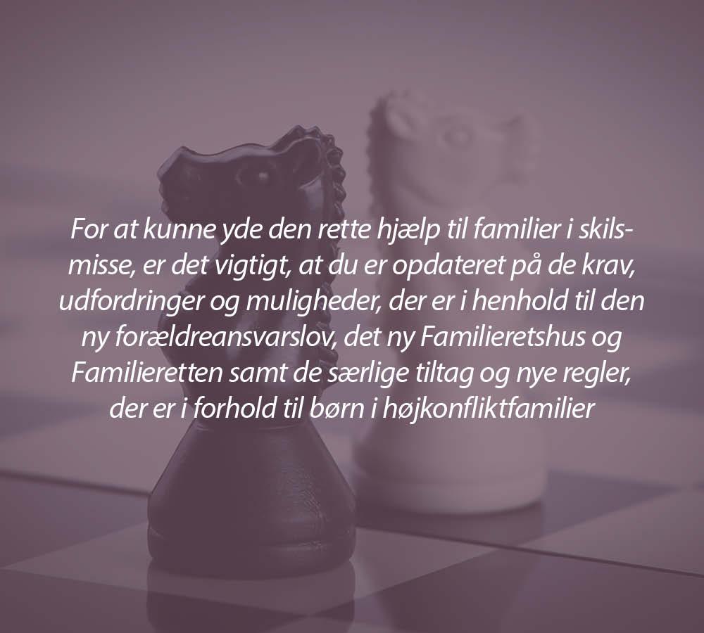 Kursus_single_1000x900px_Familieretshuset og de nye skilsmisseregler