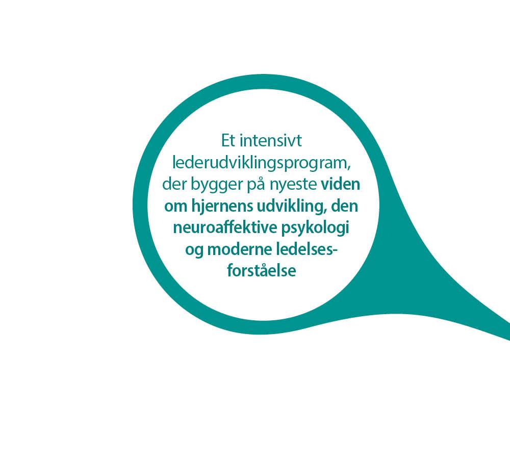Kursus_single_Neuroaffektiv lederuddannelse