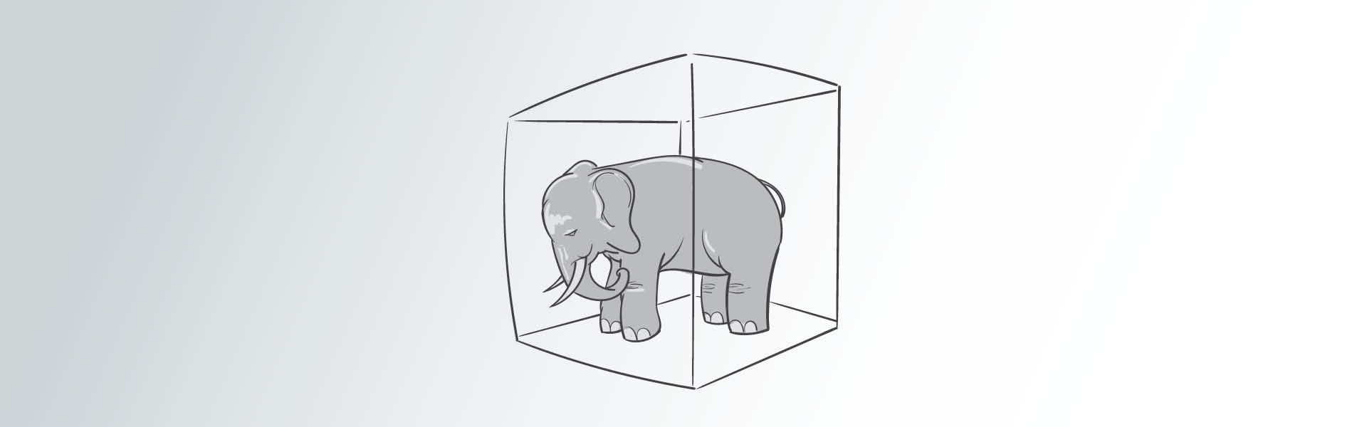 Webgrafik_elefanten i rummet