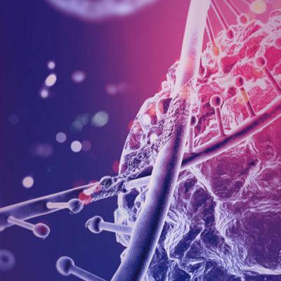 Kroppen husker – traumebehandling i et neurobiologisk perspektiv