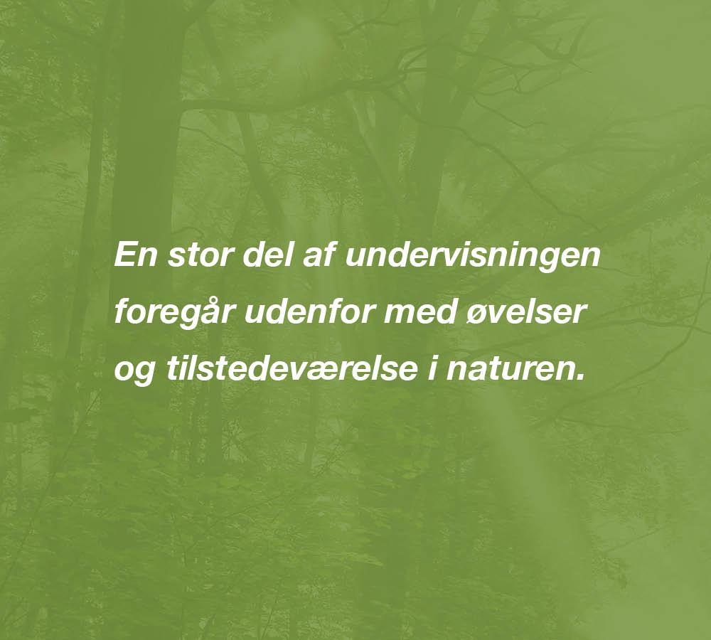 Webgrafik_Udd_NaturterapiH3_B