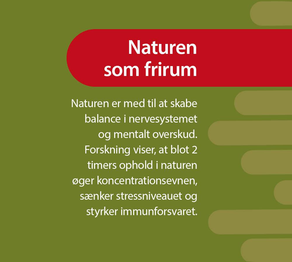 Webgrafik_Naturterapeutisk forløb for stressramte3