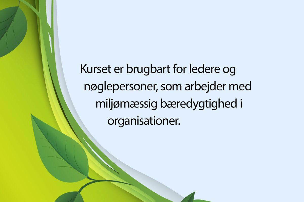 Webgrafik_Ledelse af miljømæssig bæredygtighed2