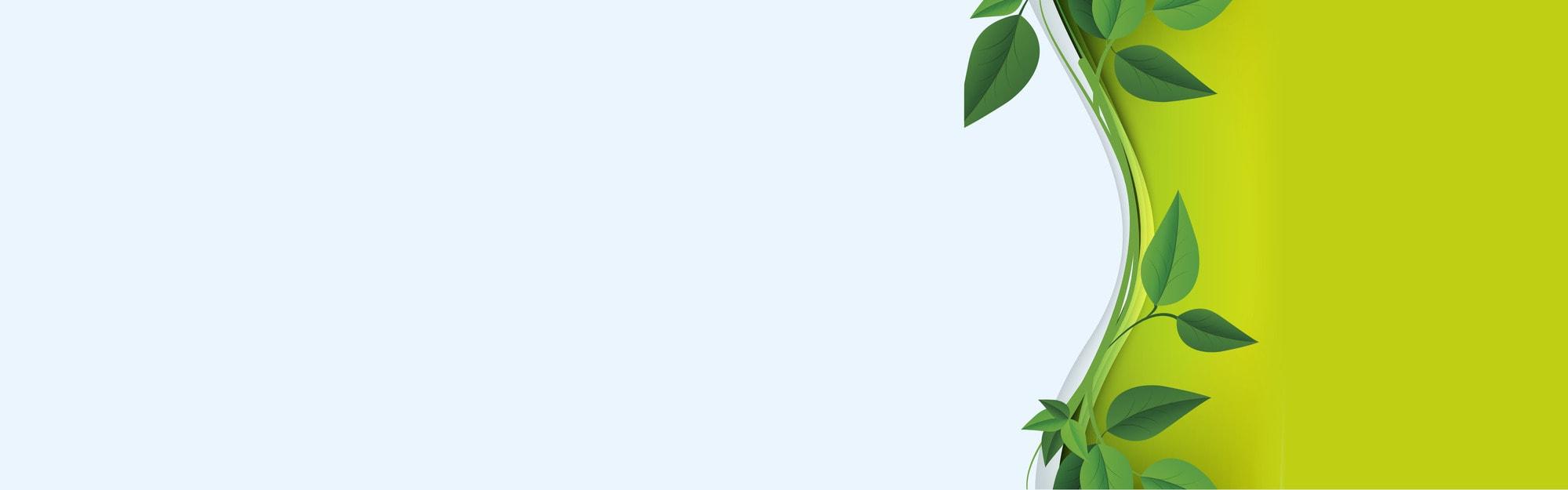 Webgrafik_Ledelse af miljømæssig bæredygtighed8