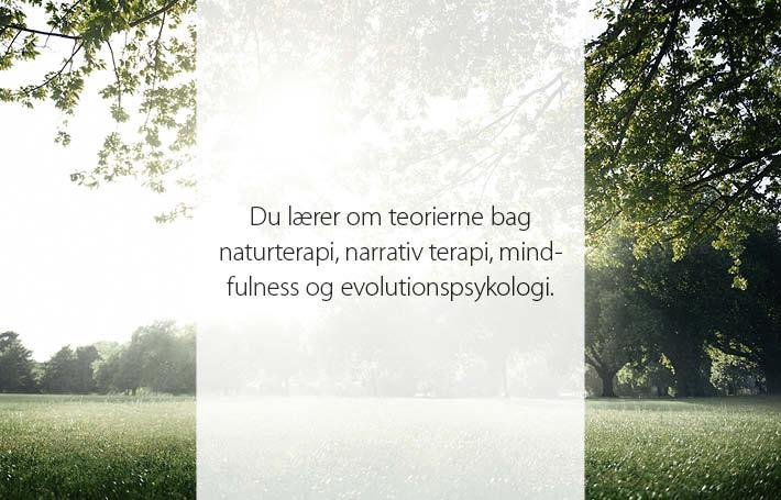 Webgrafik 1_naturterapi2