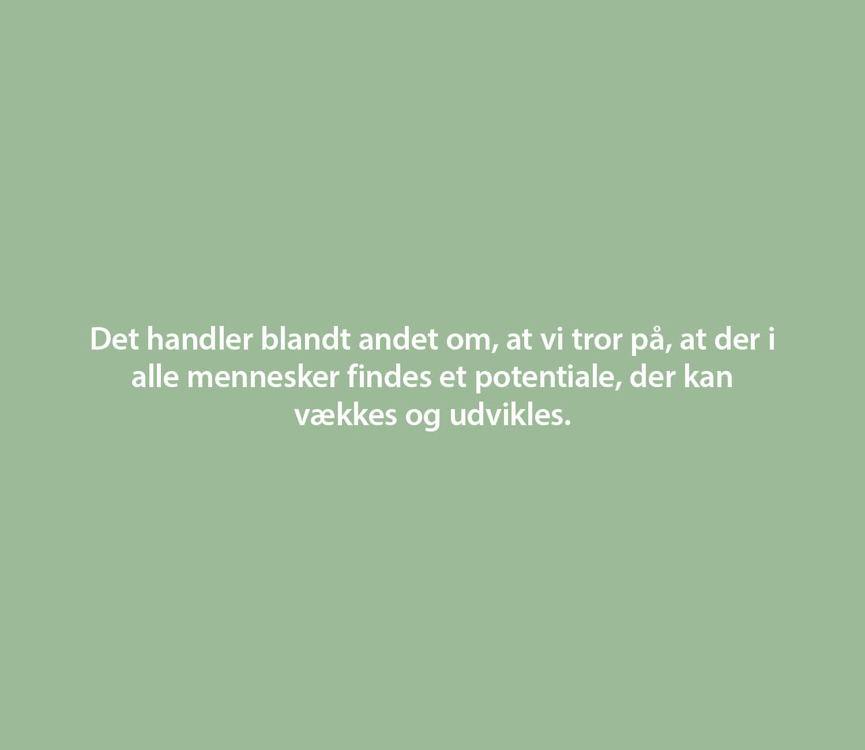 Webgrafik_Ingen er håbløs3