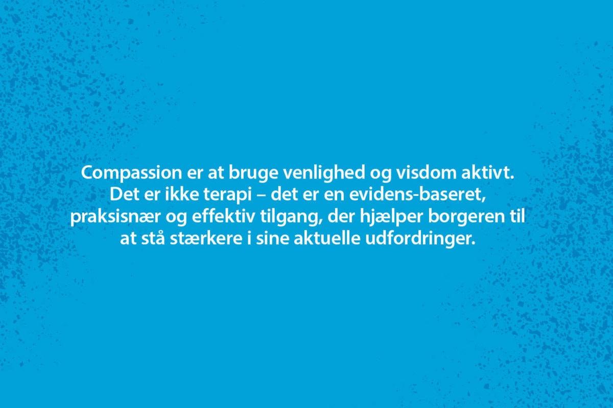 Webgrafik_Sårbarhed2