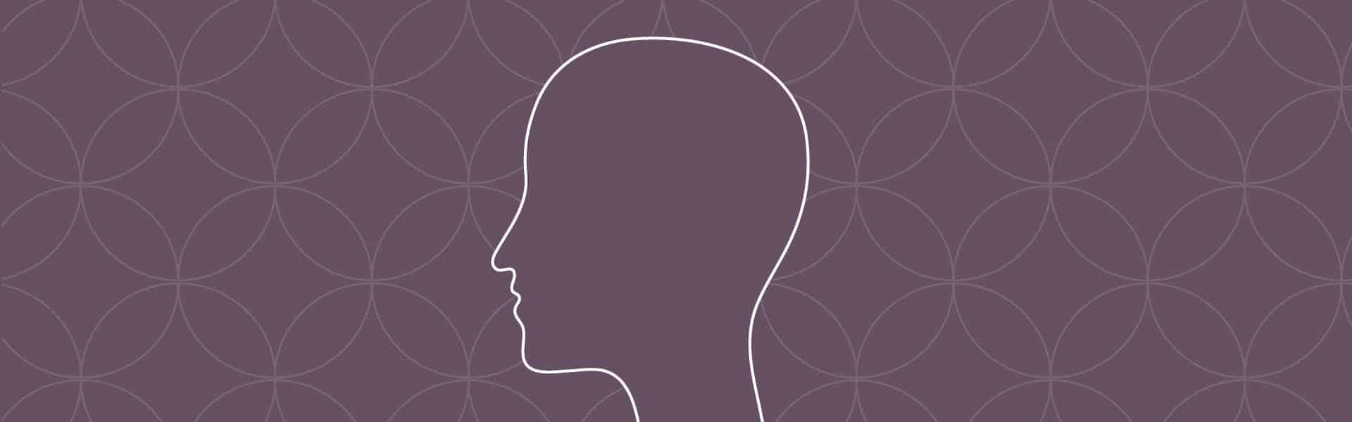neuropædagogiske seks principper