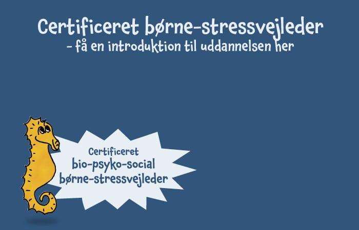 Web_Certificeret bio-psyko-social b├©rne-stressvejleder5