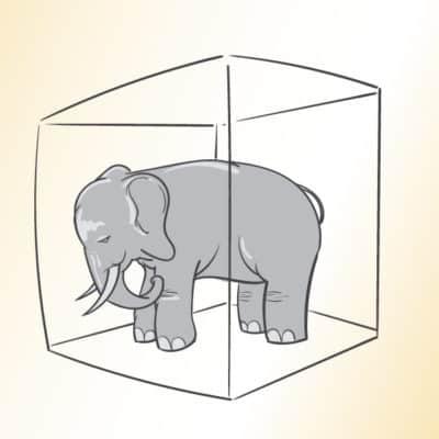 Mod til at handle på elefanten i rummet – målrettet ledere
