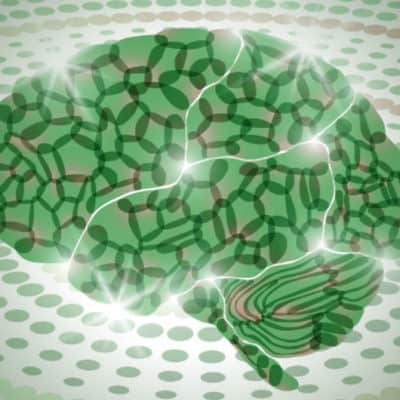 Metakognitiv terapi – en online træningsdag